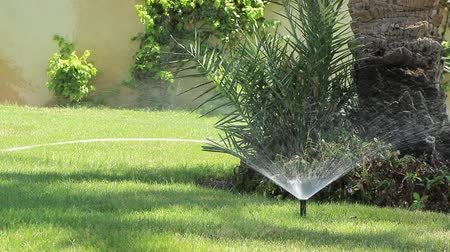 шланг : Irrigation equipment. Sprinkler spraying drops of water on the green grass in the garden. Стоковые видеозаписи