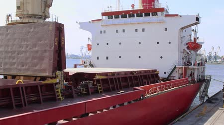 the ship arrived at the port and stands near the berth unloading cranes bulk cargo Wideo