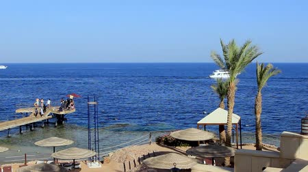 Coral beach with pier and boat the Red Sea near the reef. Egypt Sharm El Sheikh