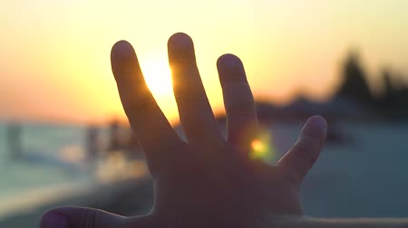 palm hands : Silhouette of hands against the sun. Sunset on the sea coast. Sun rays through the fingers of the hand. Summer evening at the beach.