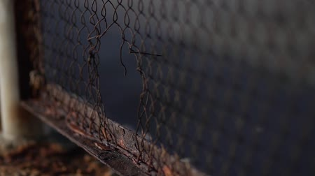 korozyon : Harmful effects of oxygen and water on the metal. Iron rust. Oxidation of metals. Hole in the fence mesh.