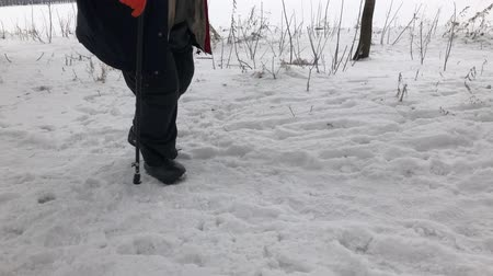 Lower part of a man wearing valenki(kind of felt boots) walking on a snow covered footpath using walking stick.
