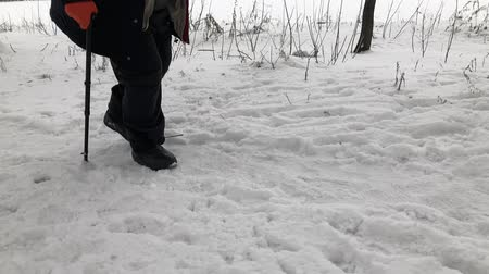 Overweighted senior man with walking stick walking hard on a snow covered path Vídeos