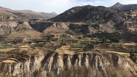 Перу : ancient farming terraces in Colca river canyon in Peru, panoramic footage
