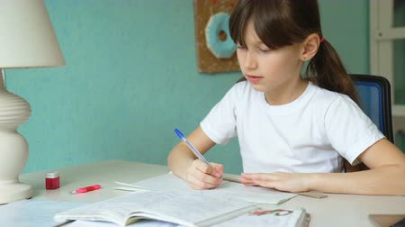 implementation : diligent realization homework. girl learning lessons. pupil writing in notebook
