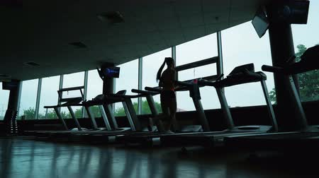 gymnasium : Young woman training in fitness club, gym and sport activity. Female working out and running on treadmill, athlete with wellness equipment. Health, sport and cardio workout concept