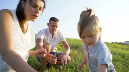 заботливый : Pregnant couple with toddler daughter have leisure time outdoors. Happy young parents expecting baby smelling flowers with child at sunset. Parenthood, pregnancy, childhood, healthy concept