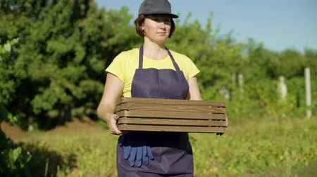 botanikus : Caucasian female in apron and cap carrying empty wooden box. Woman preparing for garden work. Gardening, leisure, hobby, agriculture, work, harvesting concept
