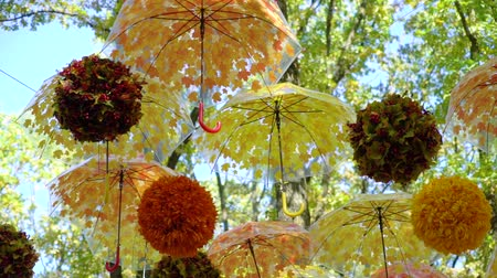 havai : lot of brightly orange and yellow umbrellas and balls hanging and moving in the wind in autumn in park. Street decoration, contemporary art, handmade concept Stok Video