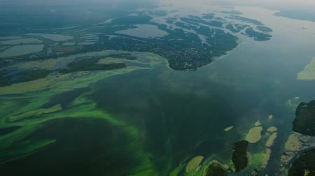 sem problemas : aerial of wide water surface with small islands covered with green algae Stock Footage