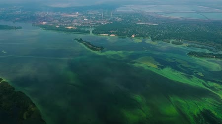 algler : aerial of river contaminated with green algae near industry zone