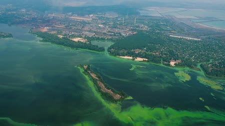 algler : aerial of wide river infected with green algae near big industry zone