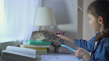 ronronar : cute girl playing with her pet cat instead of doing homework Stock Footage