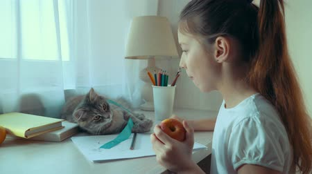 ronronar : little girl eating apple and playing with her pet cat while doing homework Vídeos
