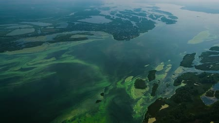 catastrophe ecologique : aerial of Dnieper river with small islands infested with blue green algae Vidéos Libres De Droits