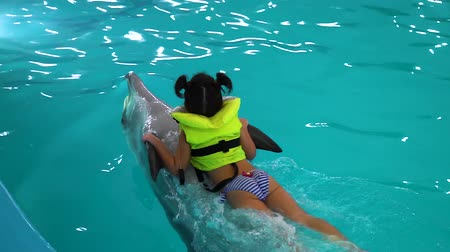 palmes : little girl in life jacket riding on dolphin stomack holding its fins
