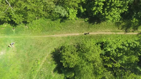 tracking : aerial top down of sports men running relay race in summer forest