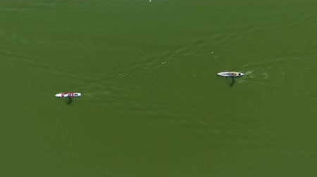 sucção : aerial top down of group of stand up paddle racers on dark green water surface