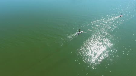 sucção : aerial top down of stand up paddle racers compete on shiny surface of dark river
