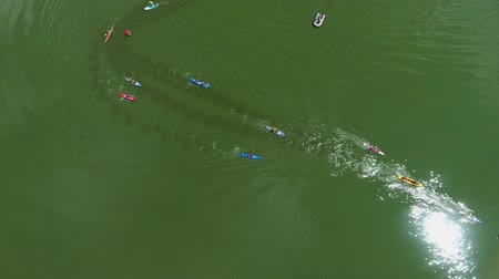 boa : aerial top down of paddlers on kayaks and SUP boards bypass buoys at water race Filmati Stock