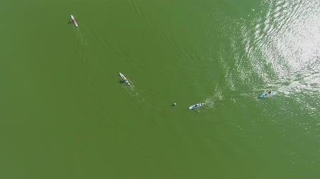 経験豊かな : aerial top down of participants of stand up paddle race bypass buoy