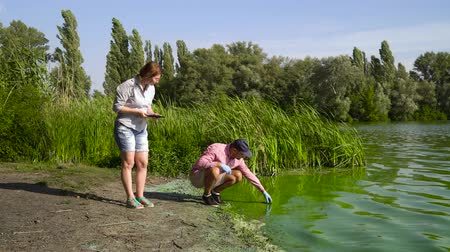 ścieki : team of ecologists take samples of green algae on bank of polluted river