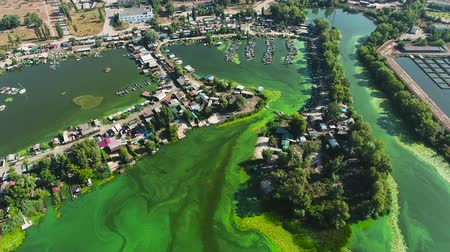 ścieki : aerial of river polluted with green algae with houses and boat docks on banks