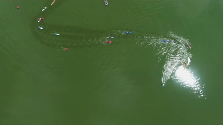 milestone : aerial of mixed race of SUP boarders and kayakers on shiny water surface