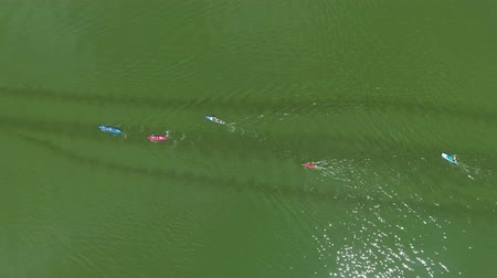 経験豊かな : aerial top down of water race of kayakers and SUP boarders on dark green river