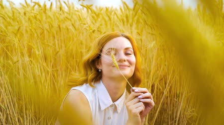 femininity : young romantic red haired woman playing with wheat ear in golden wheat field Stock Footage
