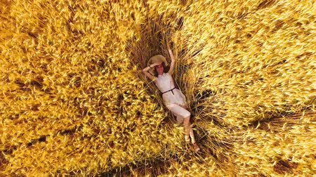positive vibes : aerial rising shot young woman lying among ripe wheat ears in golden wheat field Stock Footage