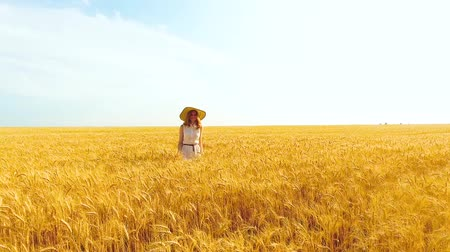 positive vibes : aerial of beautiful woman walking among ripe wheat ears in wheat field in summer