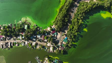 znečištěné : aerial top down of green algae polluted river water near fishermen village