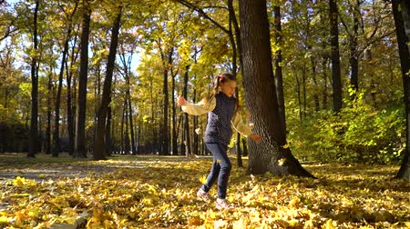 caráter : sunshine on cute little girl throwing yellow leaves up in the air in autumn park Stock Footage