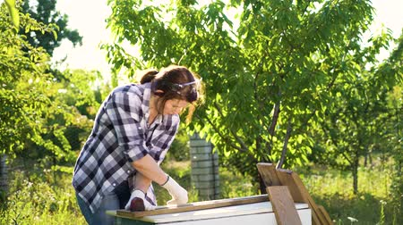 midiendo : woman woodworker measures wooden plank with measuring tape in sunny backyard