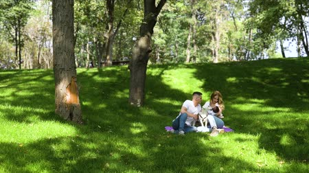 fajtiszta : Young family with newborn baby walking dog in summer park