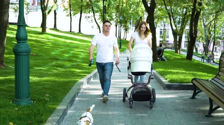 bengala : Young parents with baby stroller and dog walking in summer park Stock Footage