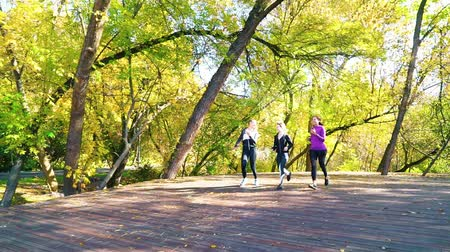 energický : Three female friends jogging in autumn park