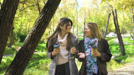 jovial : Positive business women discussing new planning in golden autumn park Vídeos