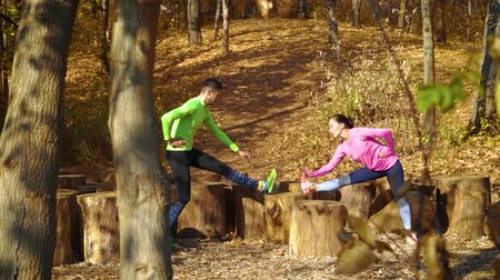 tuskó : Happy couple training together on wood stumps in autumn forest