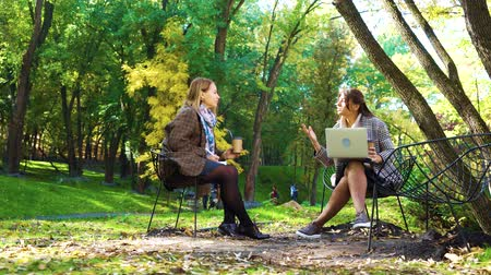remotely : Successful business women having meeting in autumn park