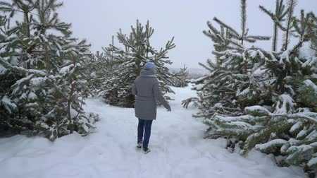 woman walking among pine trees in snowy winter forest back view