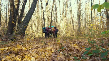 group people : Group of hikers looking at map in autumn forest