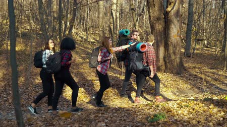 Tourists carrying backpacks walking in autumn forest Stock Footage