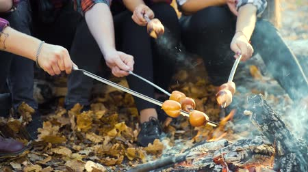 Cheerful tourists having picnic by campfire in autumn forest Stock Footage
