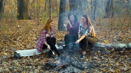 fallen leaves : Happy girls tourists roasting marshmallows over campfire in autumn forest Stock Footage