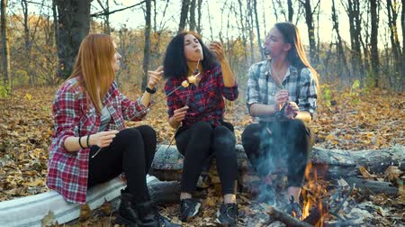 mályvacukor : Girls eating roasted marshmallows by campfire in autumn forest