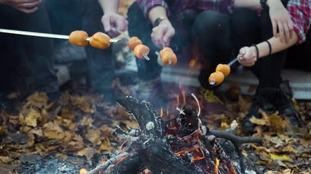 Tourists roasting sausages over campfire in autumn forest Stock Footage