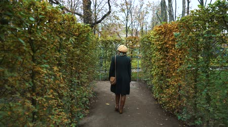 labirinto : Girl walking between rows of trees in garden labyrinth in autumn