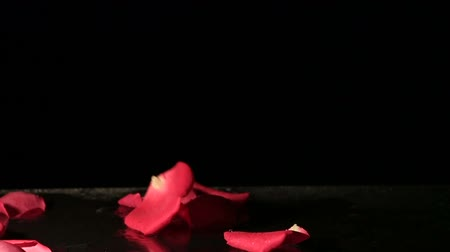virágszirom : Valentines Day - Rose petals falling into the water. Slow motion. Stock mozgókép